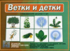 В-Д. Ветки и детки Д-512