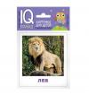 Айрис Набор карточек 'Умный малыш: Животные жарких стран' 25764