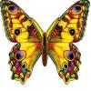 Украшение летнее Бабочка 106*146мм 410-3000277