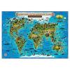 Карта Мир для детей ГеоДом Животный и растительный мир Земли 59*42см., без ламинации