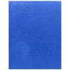 Дневник BG 'Footbal season синийl' искусственная кожа, термотиснение, сшивка, 48л 8019