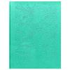 Дневник BG 'Leaves мятный' искусственная кожа термотиснение, сшивка, 48л 8018