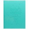 Дневник BG 'Believe dream мятный' 1-4 класс искусственная кожа, soft-touch, термотиснение 8030