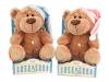 Медведь GT5952 Я расскажу тебе 4 сказки и спою колыбельную в коробке 25см TM PLUSH APPLE